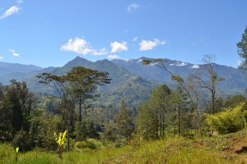 Highlands in Papua New Guinea