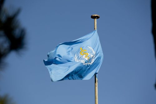 The World Health Organization Flag