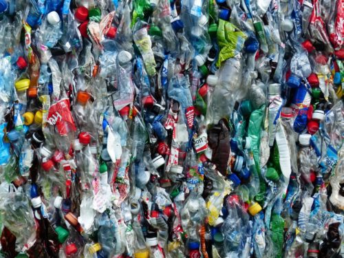 Bottles ready for recycling