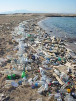 Single use plastics pollute oceans and beaches.