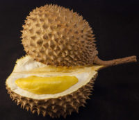 Durians have a strong smell, but some people like the way they taste.