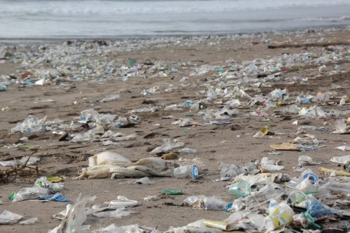 The trash from the containers is now washing up on beaches near Sydney.