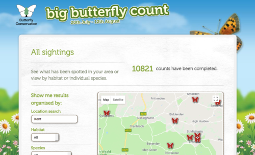 Screen shot of the results page of the Big Butterfly Count.