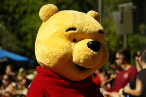 Winnie the Pooh Costume Taken at the Disney Street Parade