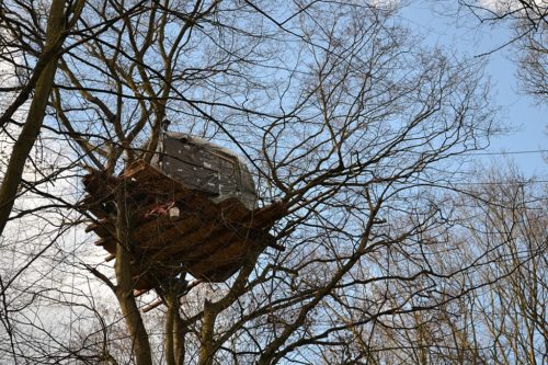 Protester's tree house, high in the Hambach Forest.