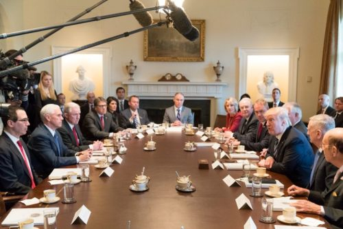 This picture shows Mr. Trump with his cabinet in 2017.