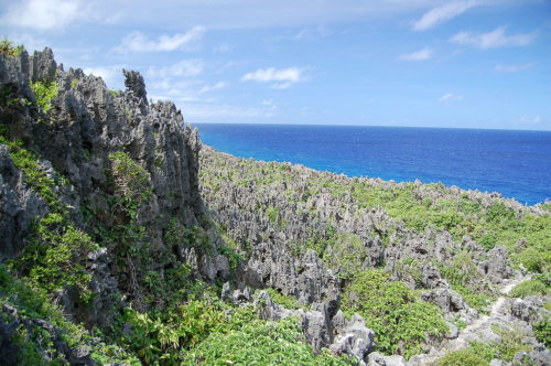 View from highlands of Niue looking down toward the ocean.