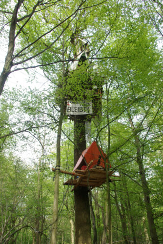 Protester's tree house in Hambach Forest.