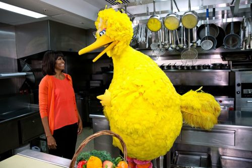 "First Lady Michelle Obama participates in a ""Let's Move!"" and ""Sesame Street"" public service announcement taping with Big Bird in the White House Kitchen, Feb. 13, 2013. (Official White House Photo by Lawrence Jackson)"