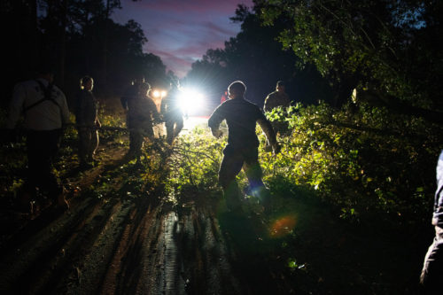 Florida National Guard working to clear trees blocking a road.