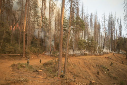 A wide shot of the favorable burn being conducted and held by the Sierra Hotshots; Ferguson Fire, Sierra NF, CA, 2018.