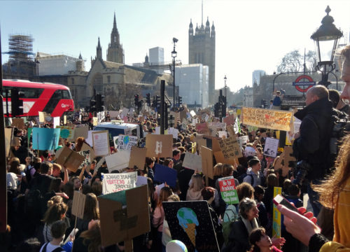 London February 15 2019 (41) School Students Strike for Climate Action