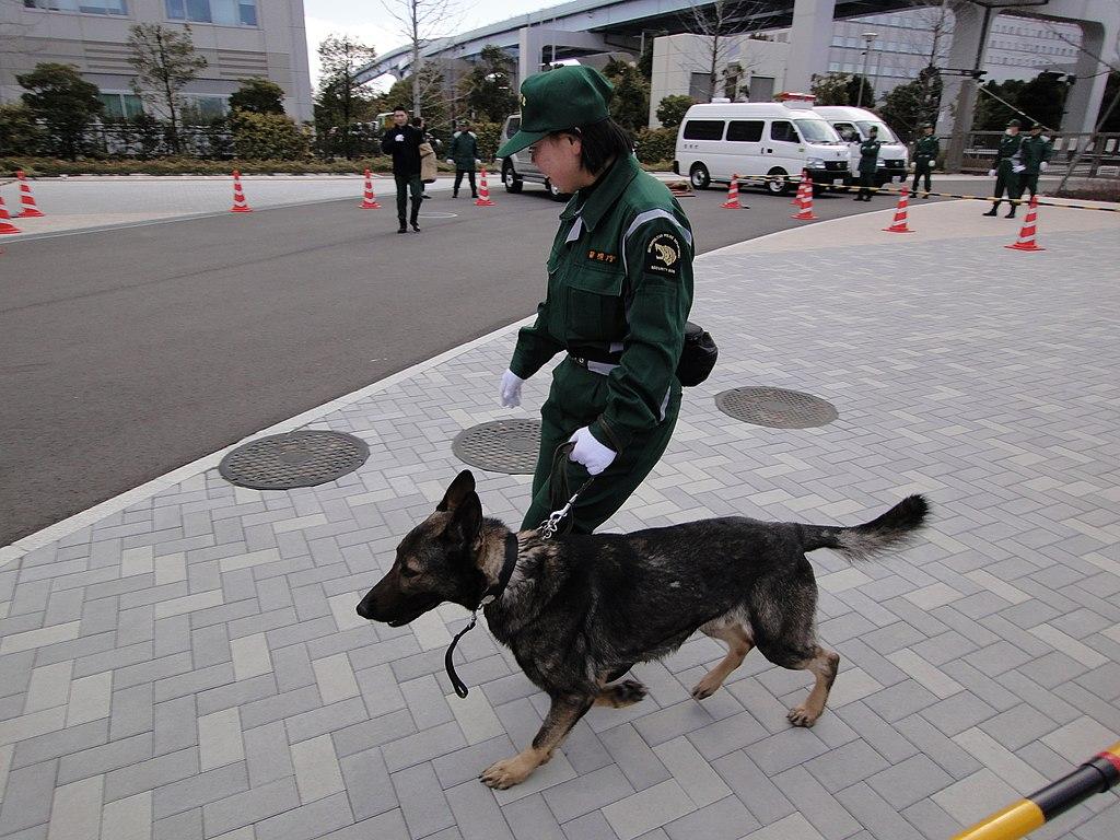 Police Dog in Tokyo, Japan