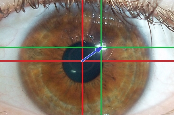 Eye-tracking algorithm using visible light (passive light) with center of iris (red), glint (green), the output vector (blue)