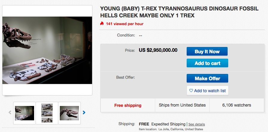 Screenshot of eBay listing for a T. Rex auction