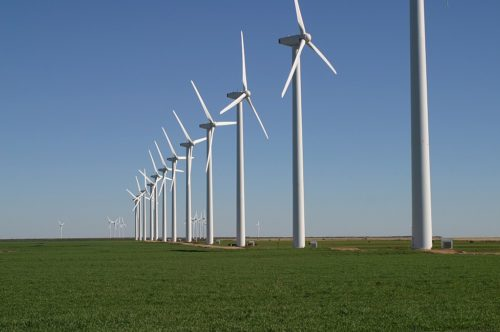 The Brazos Wind Farm, also known as the Green Mountain Energy Wind Farm, near Fluvanna, Texas. Note cattle grazing beneath the turbines.