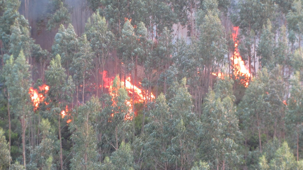 Portugal wildfires - fire spreading
