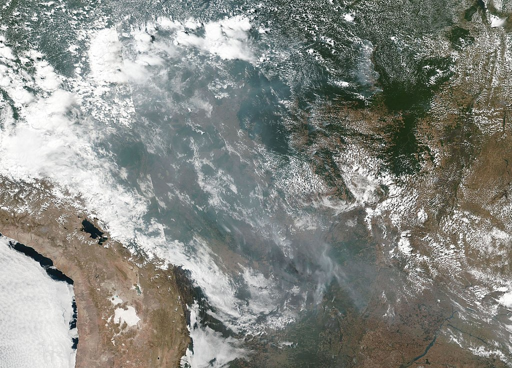 Natural-color image of smoke from wildfires burning in the Amazon basin on August 20, 2019, taken by the Suomi NPP using the VIIRS (Visible Infrared Imaging Radiometer Suite)