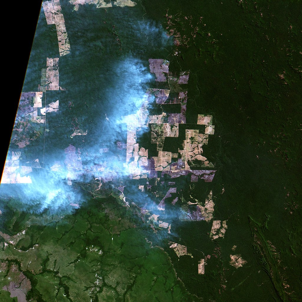 Agricultural fires at southern Pará, Brazil