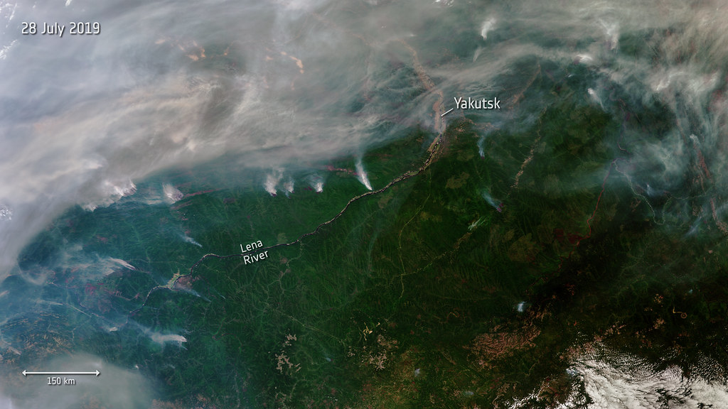 Siberian Wildfires - Hundreds of wildfires have broken out in Siberia, some of which can be seen in this image captured from space on 28 July 2019. Almost three million hectares of land are estimated to have been affected, according to Russia's Federal Forestry Agency.