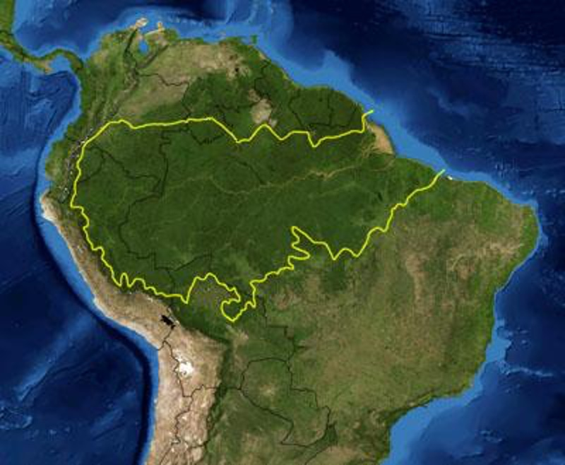 This is a map location of the Amazon Basin. The yellow line encloses Amazon Basin as delineated by the World Wide Fund for Nature. National boundaries are shown in black