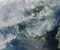 After several relatively quiet fire seasons in Indonesia, an abundance of blazes in Kalimantan (part of Borneo) and Sumatra in September 2019 has blanketed the region in a pall of thick, noxious smoke. Caption by Adam Voiland.
