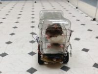 Rat driving a car controlled by copper wires.