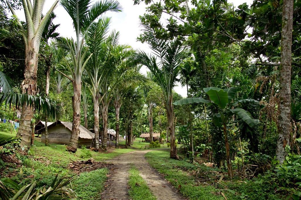 Village on Buka Island, Bougainville