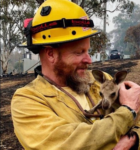 US Forest Service fire fighter Dave Soldavini with a rescued joey (young kangaroo).