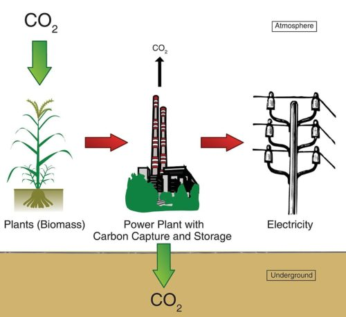 Diagram of a bioenergy with carbon capture and sequestration power plant. Plants remove CO 2 from the atmosphere while growing. If we harvest the biomass and burn it in a power plant we can generate electricity. With BECCS, we do not release all the CO 2 into the atmosphere, but we separate the CO 2 (capture) and store it underground