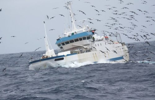 French long liner fishing in the Kerguelen waters.