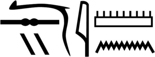 Nesyamun's name in hieroglyphs as shown in his coffin inscriptions.