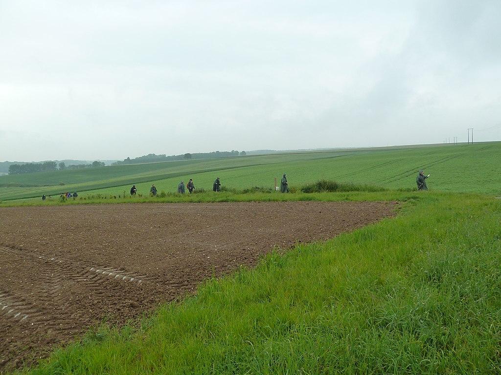 Authie.- Les fossés petits (Somme) en mai 2014