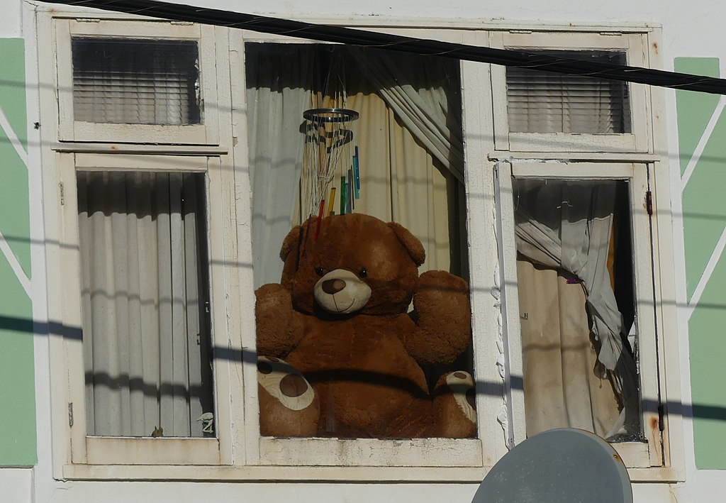 Covid-19 Big teddy in window, The Parade Island Bay, Wellington