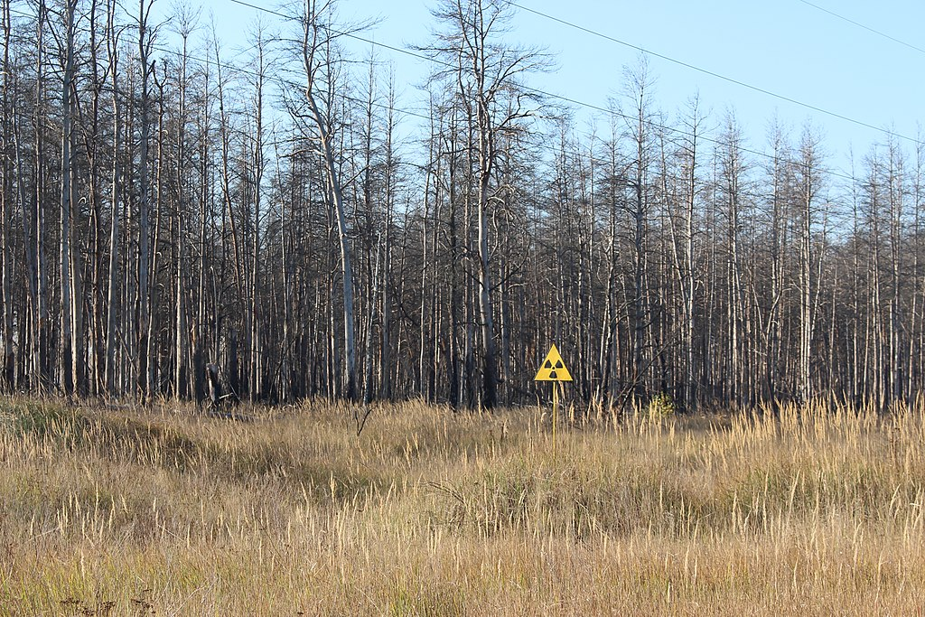 Radiation warning sign in front of the Red Forest in the Chernobyl Exclusion Zone, Ukraine