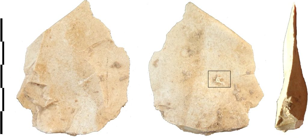 Stone tool used by Neanderthals.