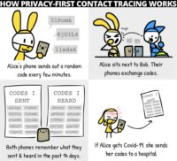 Cartoon illustrating how digital contact tracing can be done with privacy ensured.