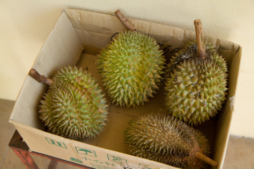 A box of ripe durians