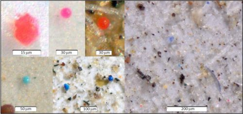 Montage of pictures of Microplastics.