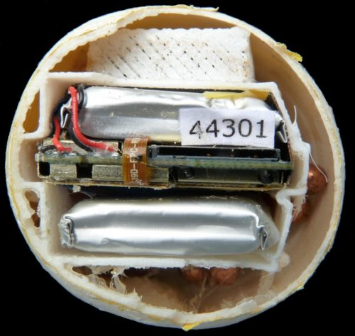 This photo shows the interior of a decoy turtle egg with visible GPS tracking mechanism