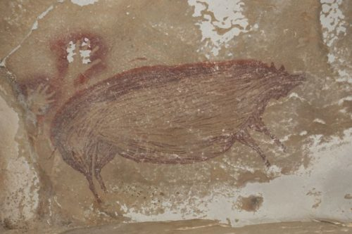A picture of the 45,500-year-old painting of a wild pig found in a cave in Sulawesi, Indonesia.