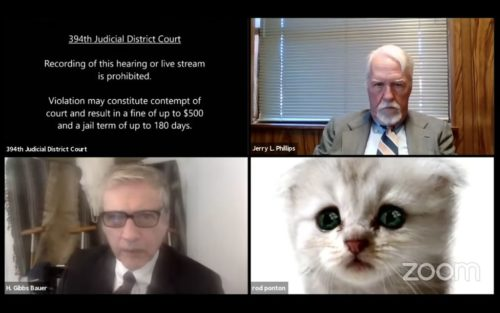 Screenshot of a video hearing in which lawyer Ron Ponton appears as a cat. Two other lawyers appear in the image.