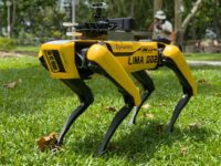 Boston Dynamics' Spot robot patrolling a park in Singapore in an attempt to encourage social distancing.