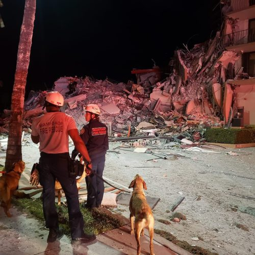 Rubble of the partially collapsed Champlain Towers South building, and rescue workers from the Miami-Dade Fire Rescue Department preparing to enter the rubble with a rescue dog.