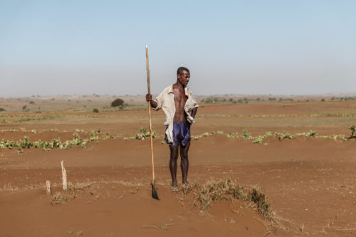 A village leader in drought-stricken southern Madagascar looks at the dry ground where plants used to grow.