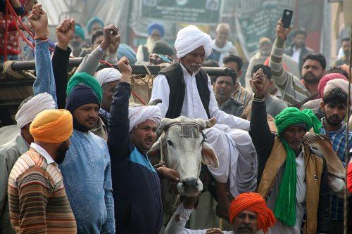 Farmers' Protest at Tikri Border, January 2021.