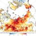 Arctic Heat Wave, Wildfires - a Global Problem