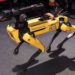 New York Police Get Rid of Robot Dog