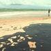 Oil Spills in Brazil and North Dakota